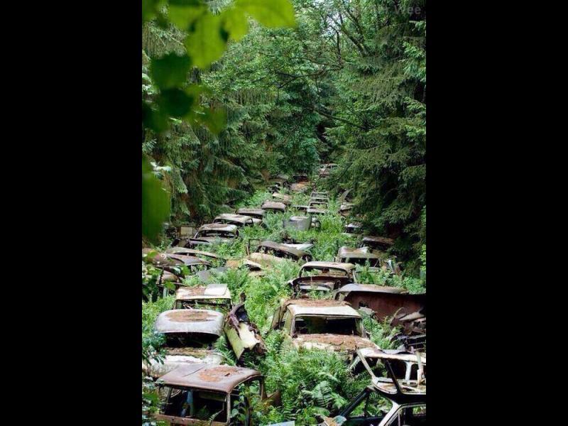 Часът на ужаса: Път към края на света - картинка 1
