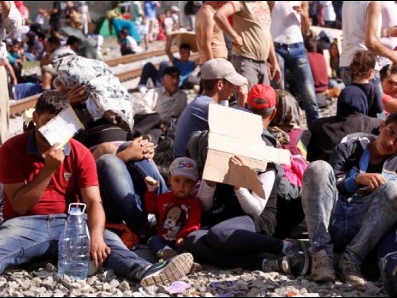 Над 3000 бежанци чакат на гръцко-македонската граница - картинка 1