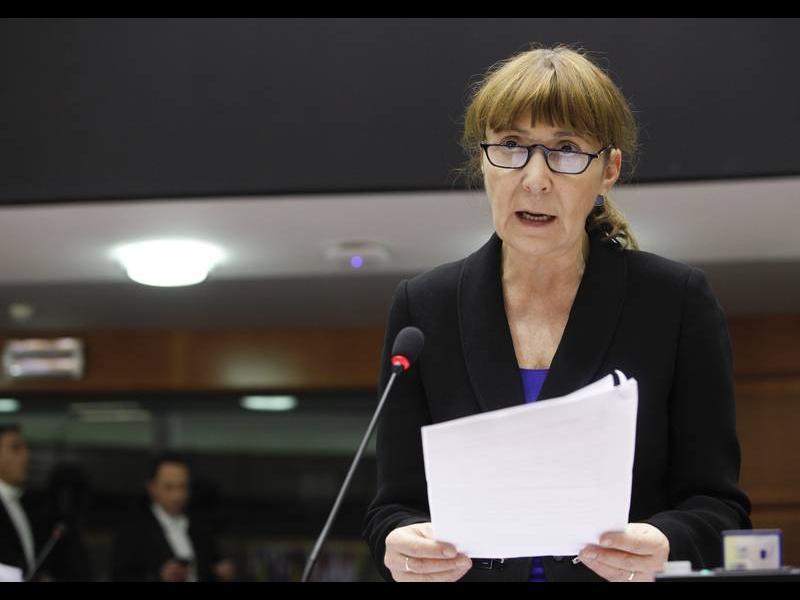 Маковей: България да признае румънските цигани за национално малцинство - картинка 1