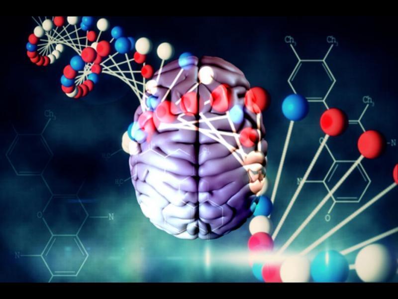 Учени лекуват аутизъм с генно инжинерство