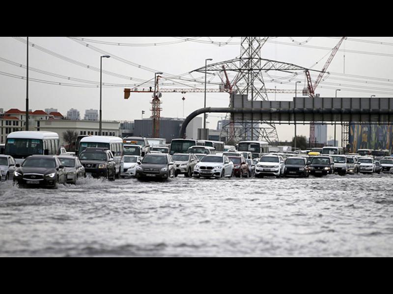 /СНИМКИ+ВИДЕО/ Затвор за снимки на природни бедствия - картинка 1