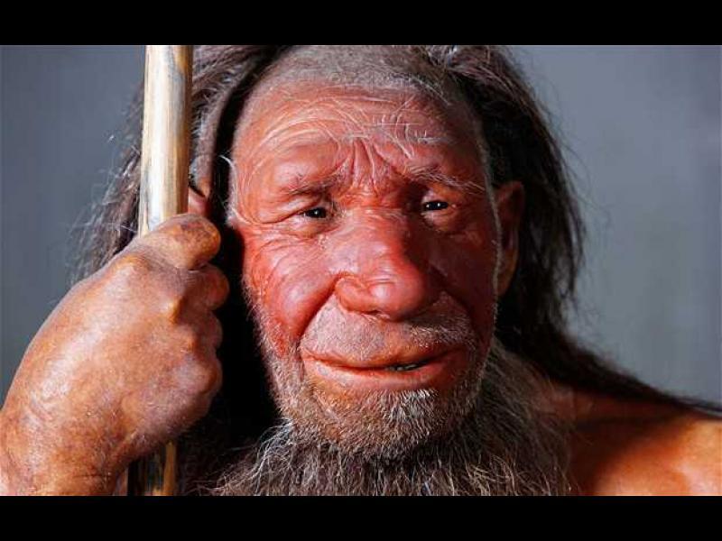 Откриха ДНК на 430 хиляди години - картинка 1