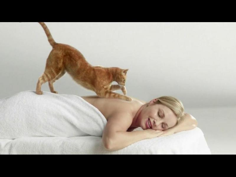 """Защо котките ни """"мачкат"""" с лапички"""