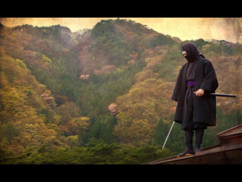 Япония ще прави туризъм с нинджи - картинка 1