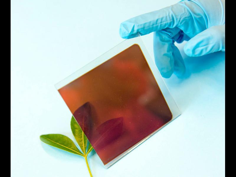 /ВИДЕО/ Фолио от соларни клетки може да доведе до нова технологична революция - картинка 1