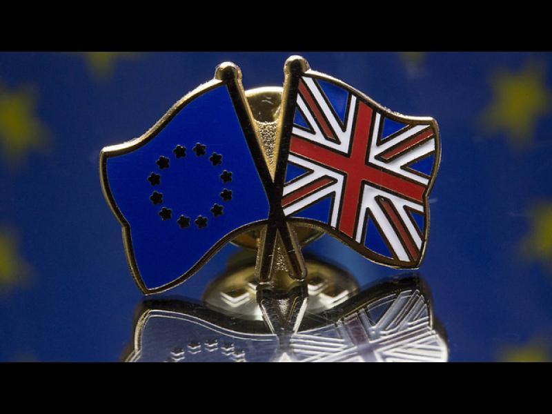 43% от британците искат страната им да напусне ЕС - картинка 1