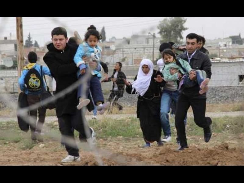 Продължава връщането на мигранти в Турция - картинка 1