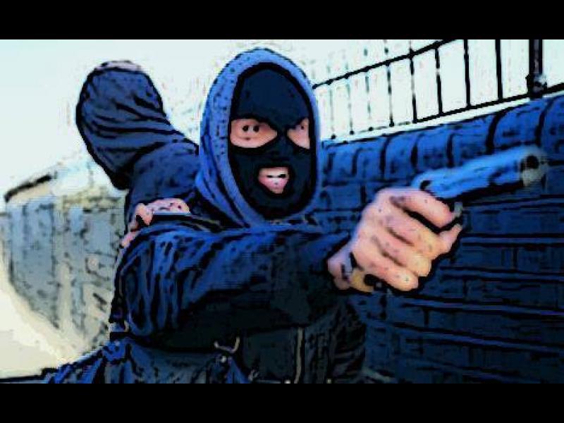 Crime Hour: Дулото на пистолета - картинка 1