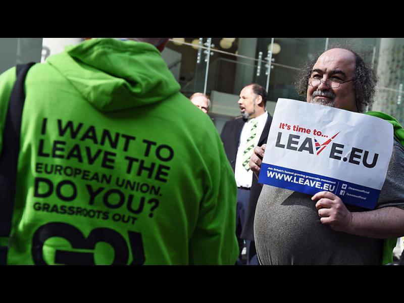 43% от британците искат страната им да напусне ЕС - картинка 3