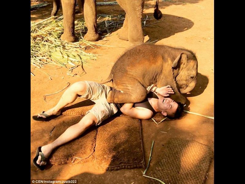 /ВИДЕО/ Ето това е слонска прегръдка! - картинка 2