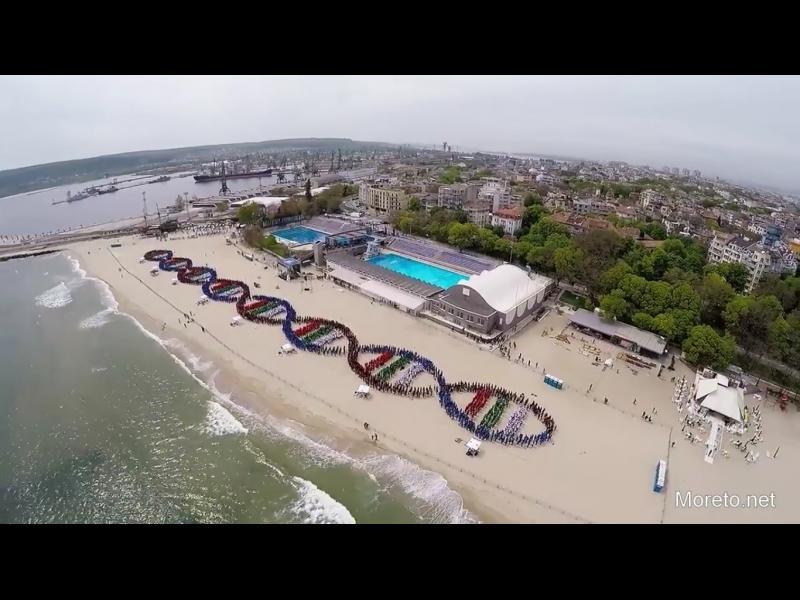 /ОБНОВЕНА!/ /СНИМКИ + ВИДЕО/ Варненци подобриха рекорд на Гинес за най-дълга ДНК верига от хора! - картинка 1