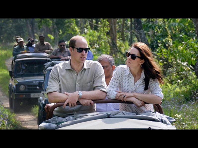 /СНИМКИ/ Кралското семейство на сафари в Индия - картинка 1