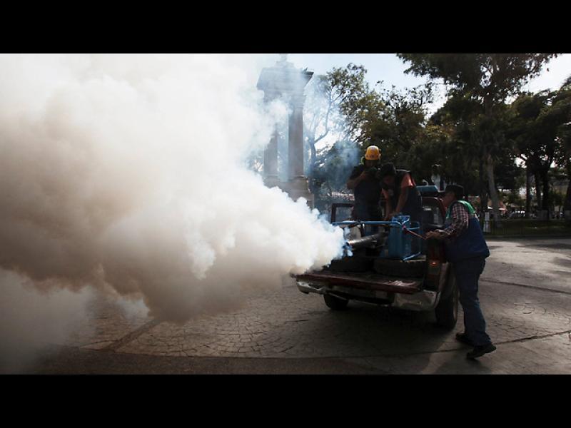 150 учени поискаха Олимпиадата в Рио да бъде отменена - картинка 3