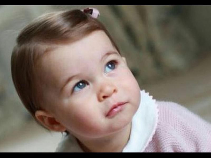 Какво подариха на принцеса Шарлот за първия рожден ден? - картинка 1