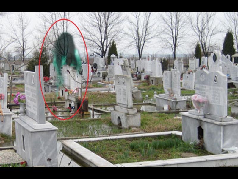 /ВИДЕО/ Призракът от Софийските гробища се появи отново - картинка 1