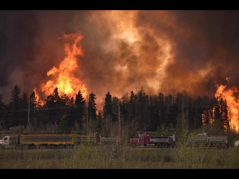 /СНИМКИ+ВИДЕО/ Разраства се пожарът в Албърта, Канада - картинка 1