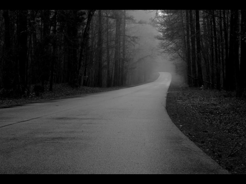 Зловещата история на Безкрайния път - картинка 1