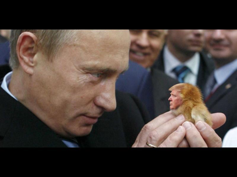 Любовната афера между Тръмп и Путин - картинка 1
