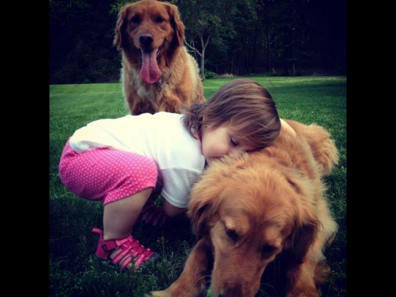 /СНИМКИ/ Оставете децата да обичат кучетата
