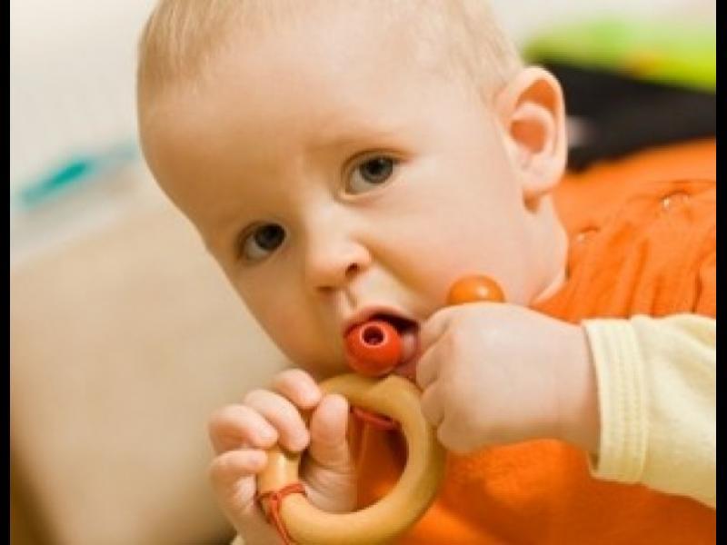 Защо малчуганите дъвчат всичко?