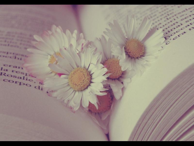 Аромат на книги и любов - картинка 2