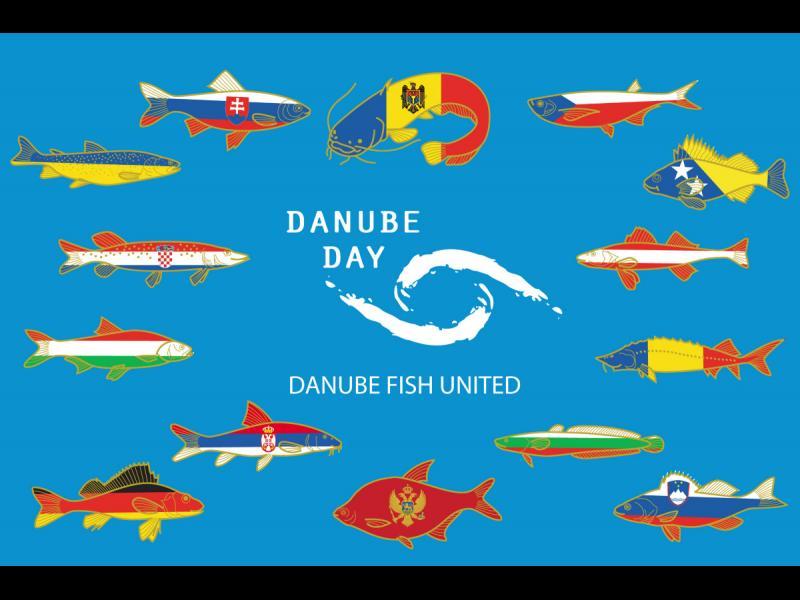 Ден на река Дунав