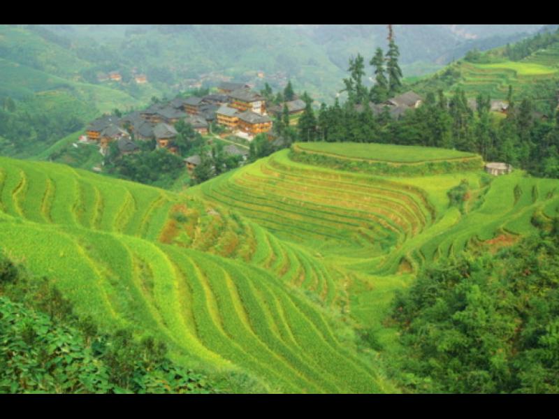 Мистериозното китайско селце Янгси