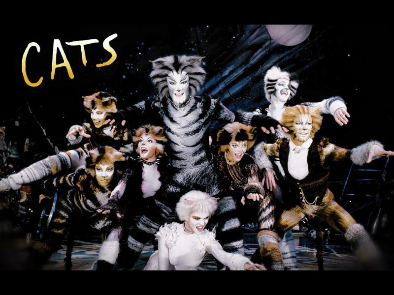 Котките - любимци на известни хора