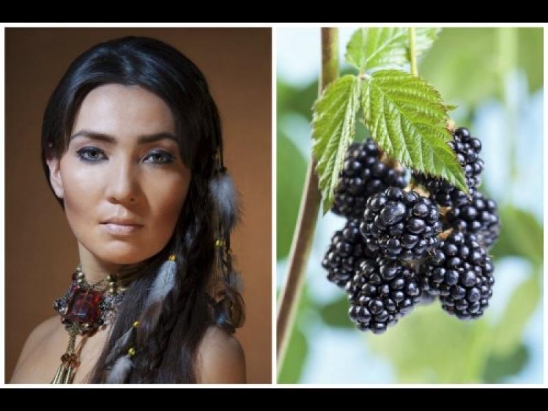Здраве от индианците: 6 растения, лекуващи много заболявания