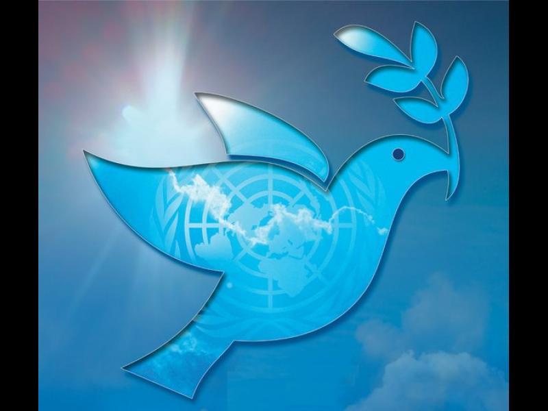 Сложете оръжия, днес е Международният ден на мира! - картинка 1