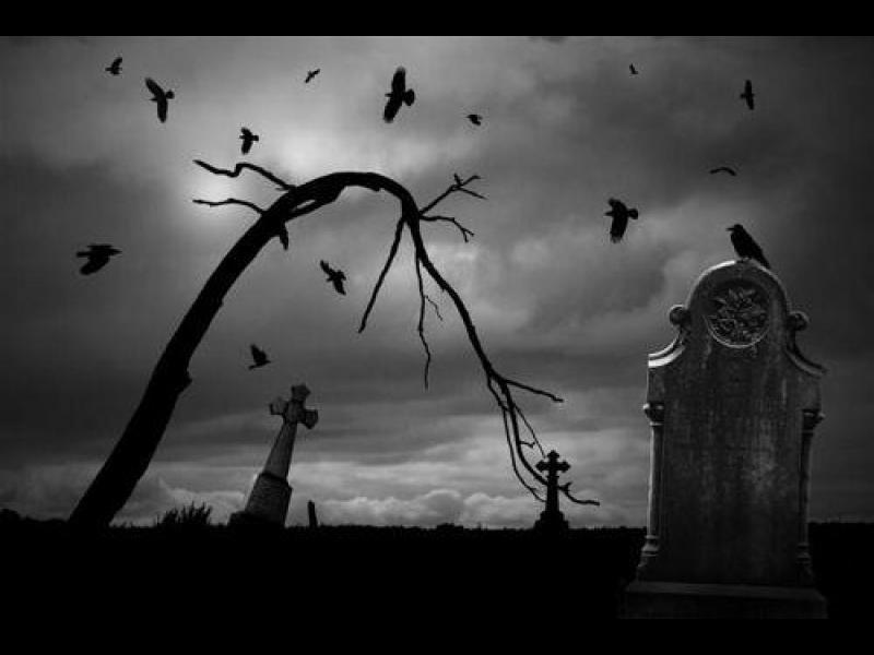 Къде отиваме след смъртта?