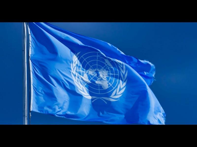 В международния ден на ООН...