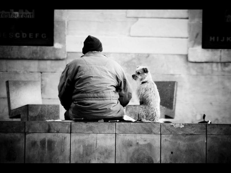 Изповедта на един клошар! Любовта на кучето е по-важна от парите! /СНИМКИ/
