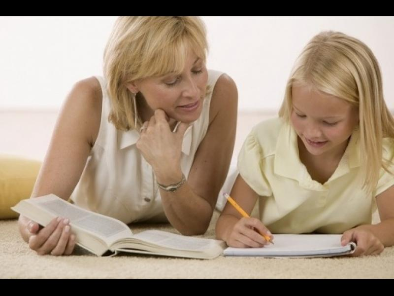 Индивидуалното обучение по-добро ли е?