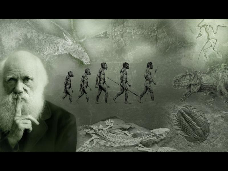 Революционната идея за еволюцията