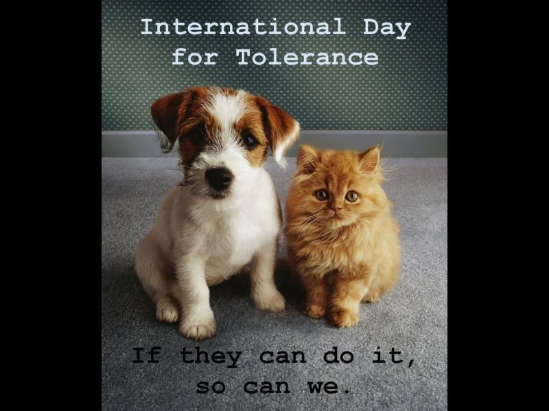 С уважение, приемане и разбиране към многообразието на култури в нашия свят