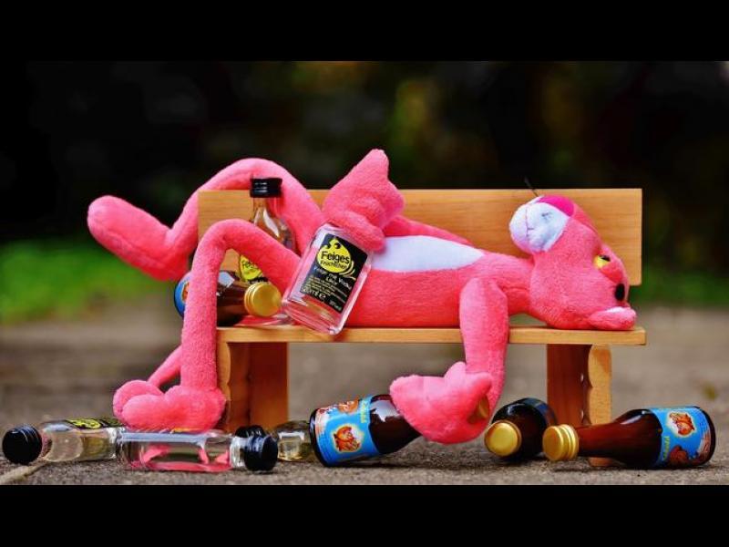 Как се напиват студентите от различните специалности?
