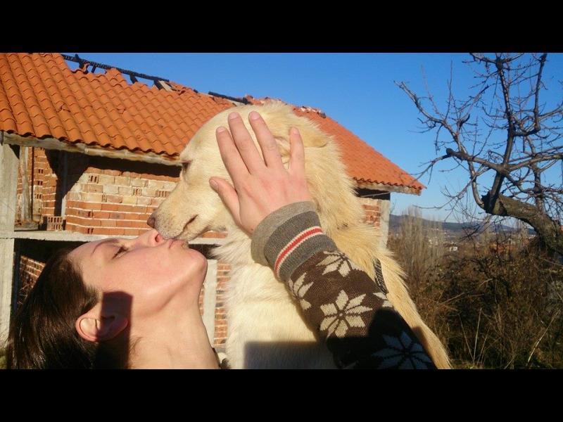 Мерал Фаик- достойният спасител на кучета и доброволец в общинския приют в Кърджали!