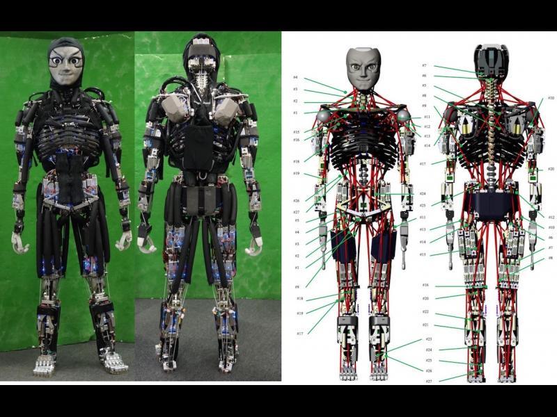 Ако искате вашият робот да върши повече работа, научете го да се... поти!