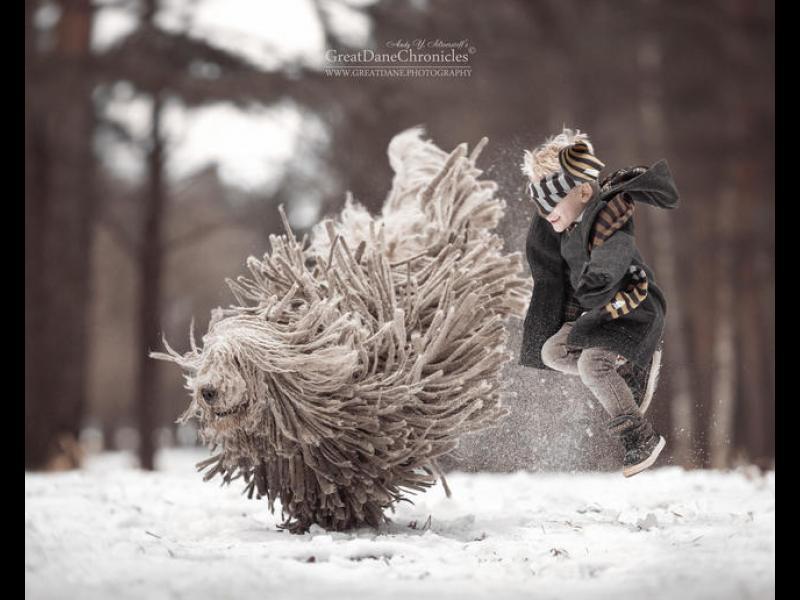 Трогателни снимки: малко момче и огромно куче се забавляват заедно