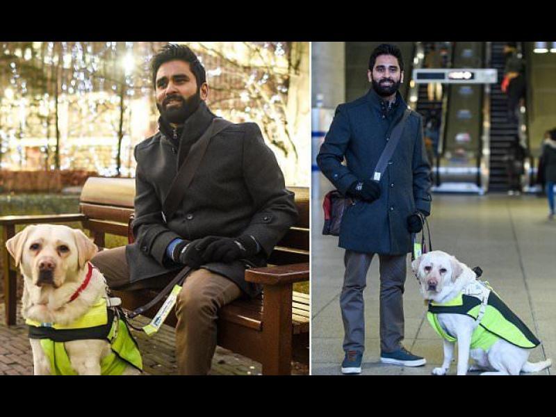 Куче водач засне безразличието към хората с увреждания /ВИДЕО/
