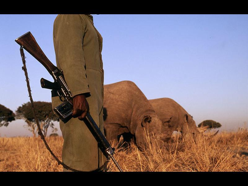 Паркът, в който стрелят по хора, за да предпазят животните