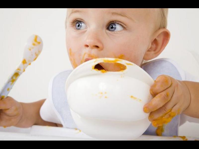 Бебешката храна е бедна на мазнини