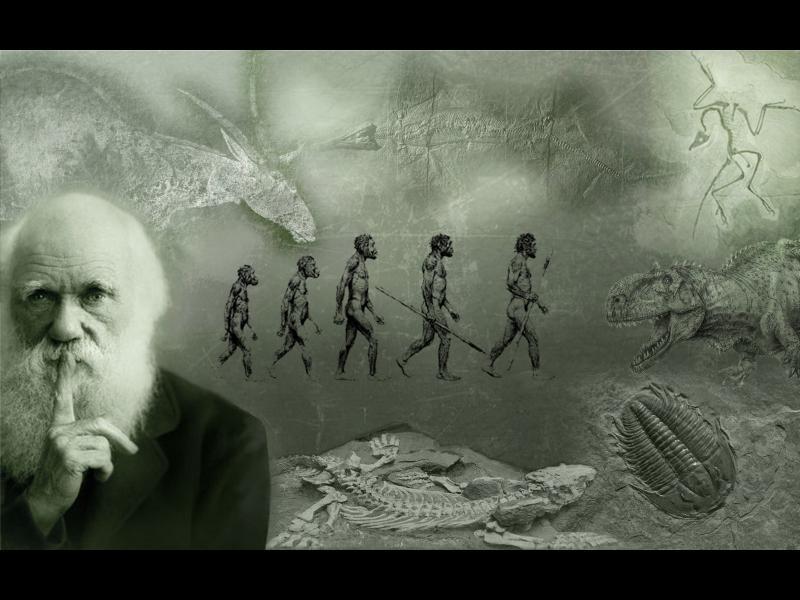 Денят на еволюцията - картинка 1