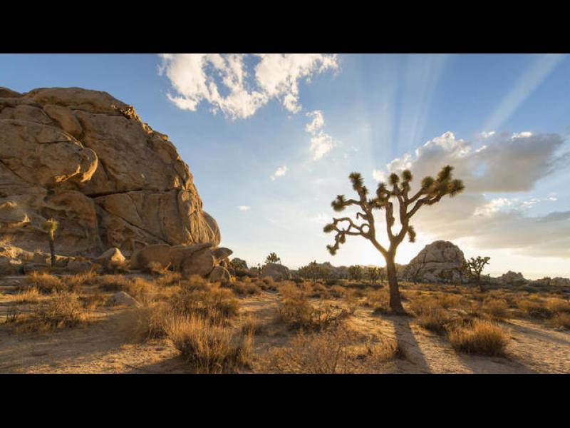 Мястото, на което се събират две пустини /ВИДЕО/