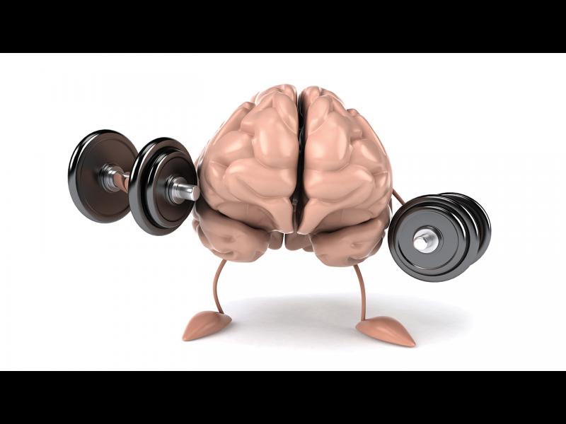 Тренирайте мозъка - учете!