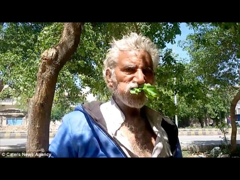 Пакистанец яде от години листа и кора от дървета /СНИМКИ/