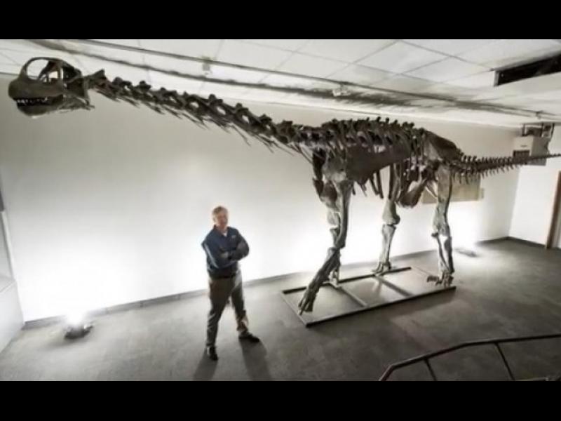 Откриха нов вид динозавър /ВИДЕО/