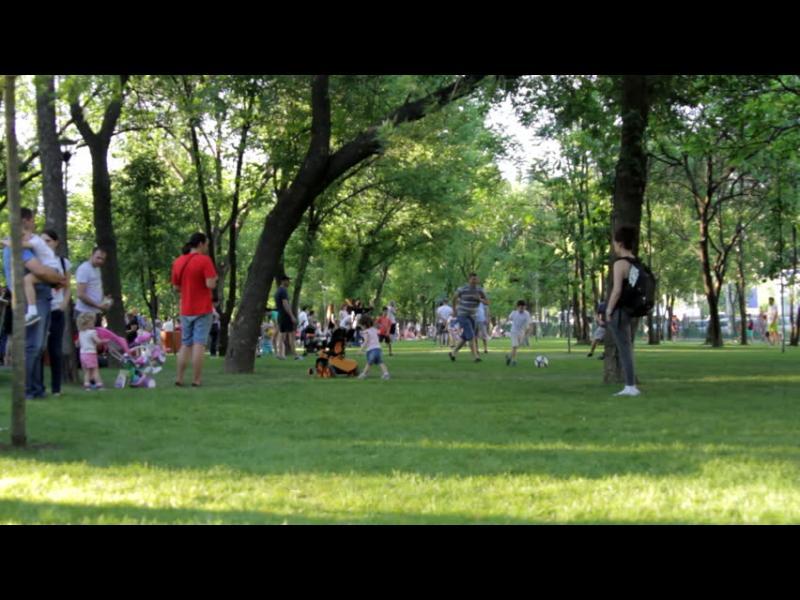 Хайде на пикник в парка!