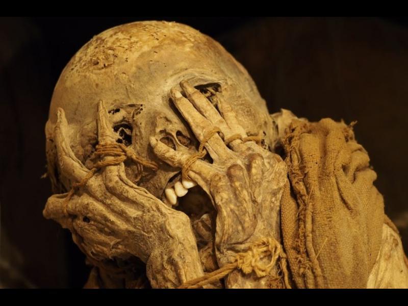 Нашествието на германските мумии